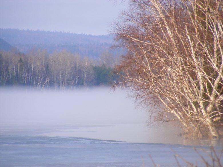 Matin de brume au lac Hélène, Évain