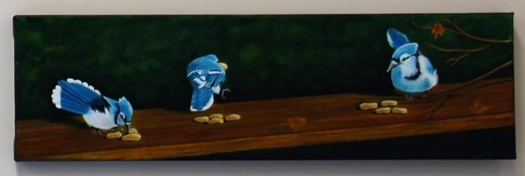 Geais bleus, par Nicole St-Amant
