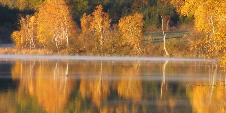 Automne Lac Helene