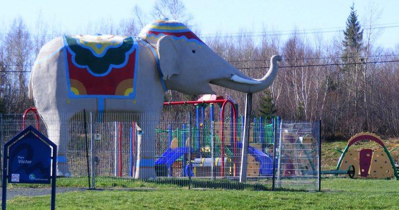 Elephant 8626