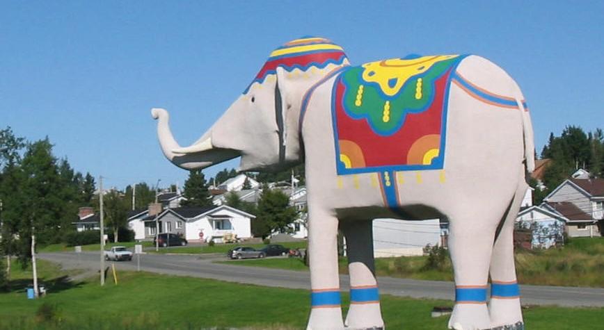 elephant2008b.jpg#asset:6108